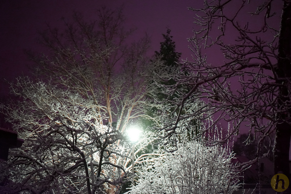 Weiße Prachtnacht