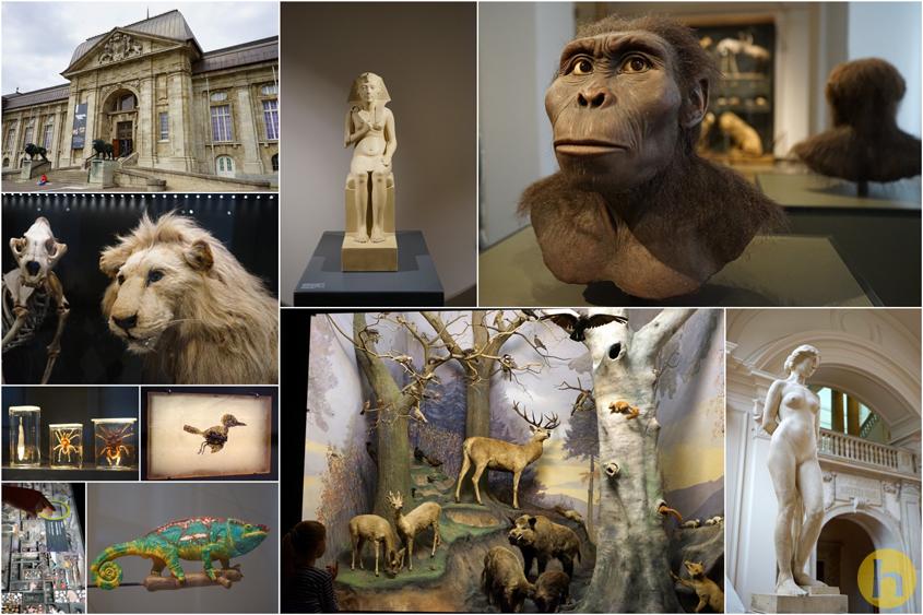 Fotocollage_Landesmuseum copy